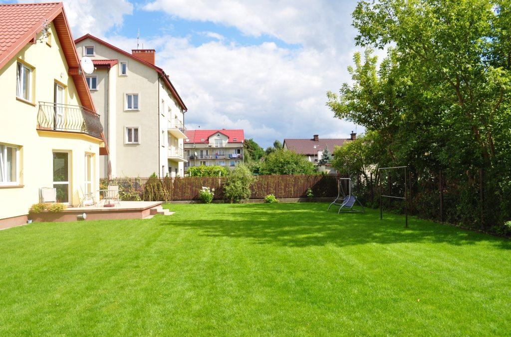 Jak zakładać trawnik
